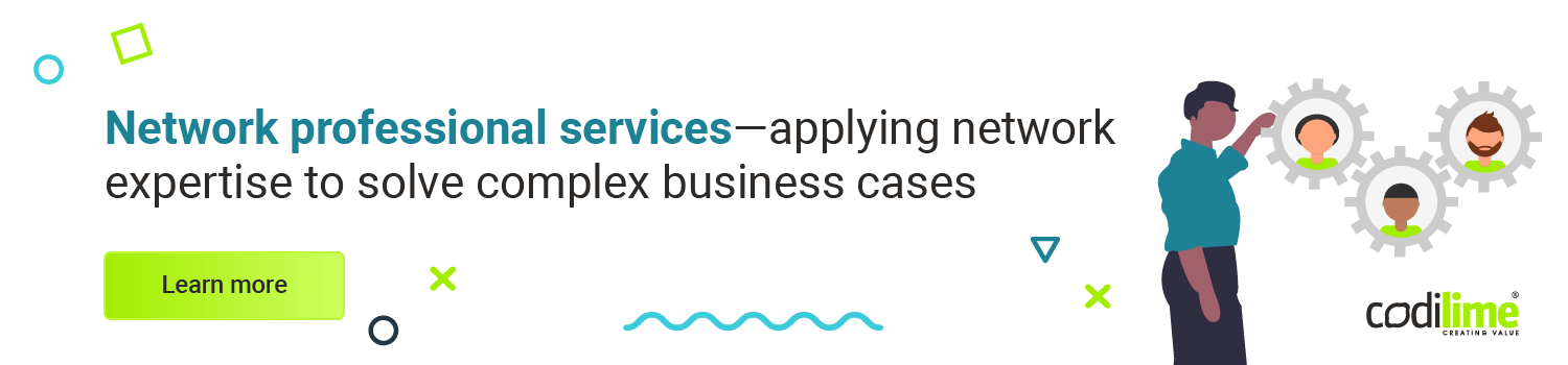 Network Professional Services - CodiLime