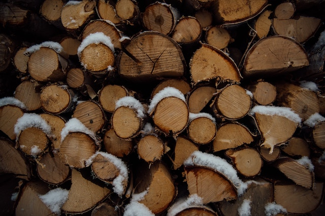 A stack of chopped firewood