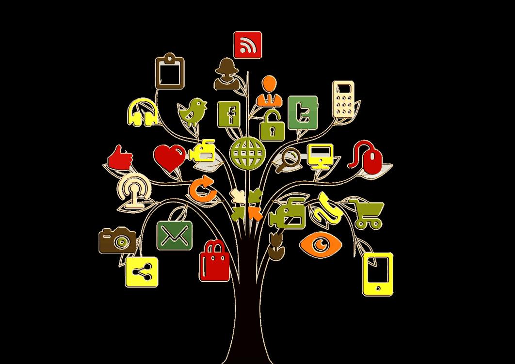 Socialinių ryšių medis