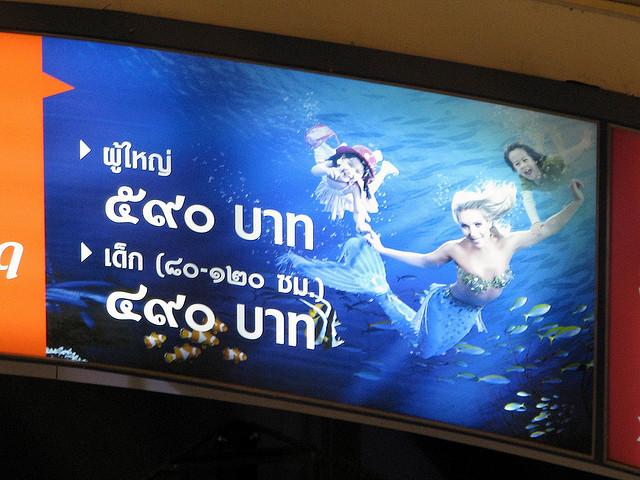 Cennik Siam Ocean World