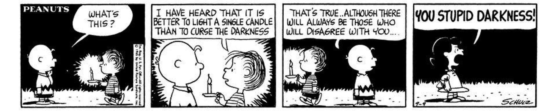 You Stupid Darknes! http://www.gocomics.com/peanuts/1965/09/09.