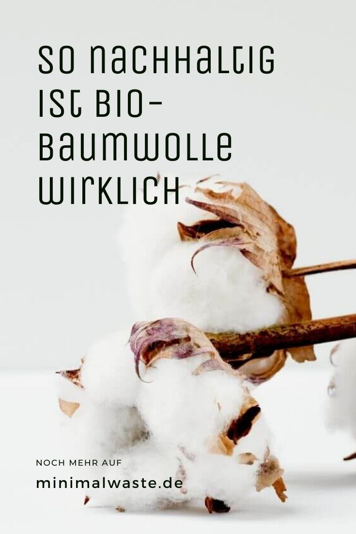 Pinterest Cover zu 'Wie nachhaltig ist Bio-Baumwolle?'