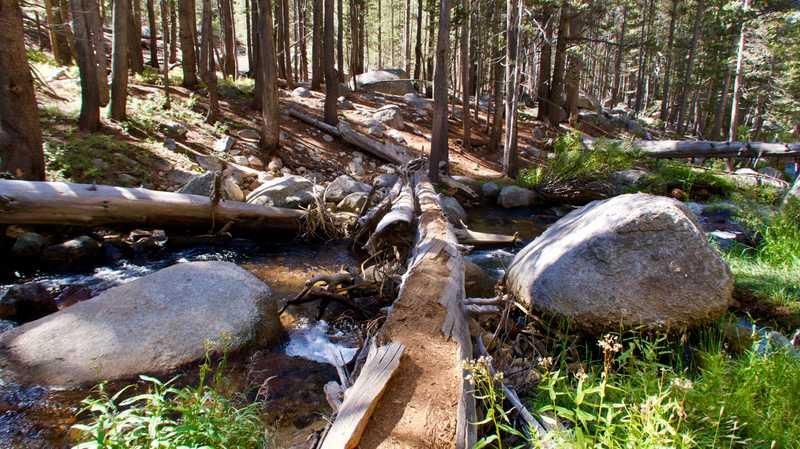 A log crossing a creek
