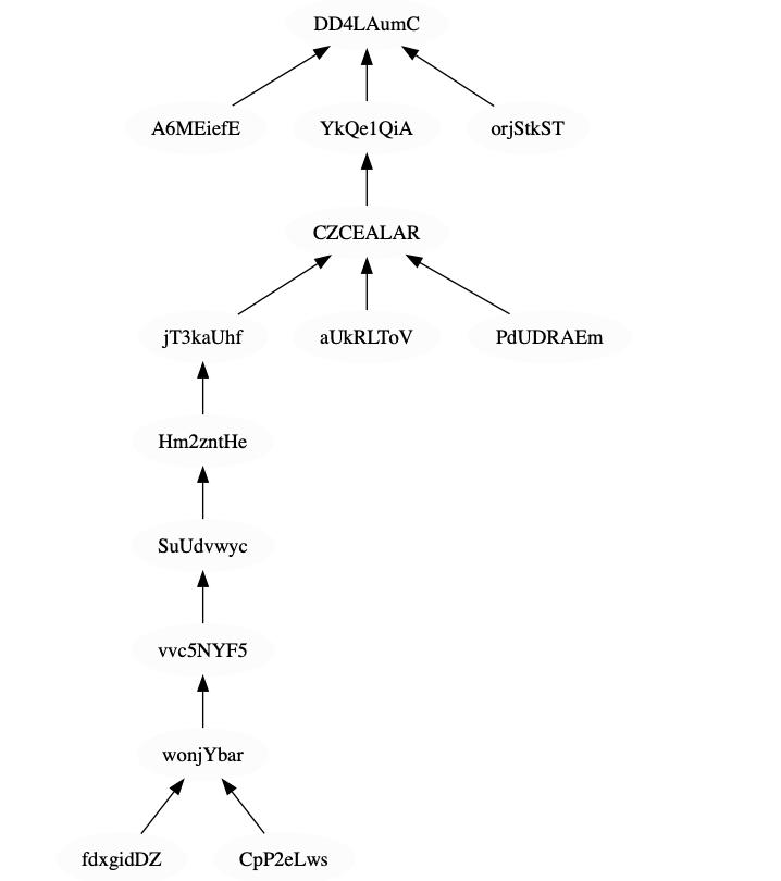 Visualization of the Coda Blockchain and its Singleton Forks