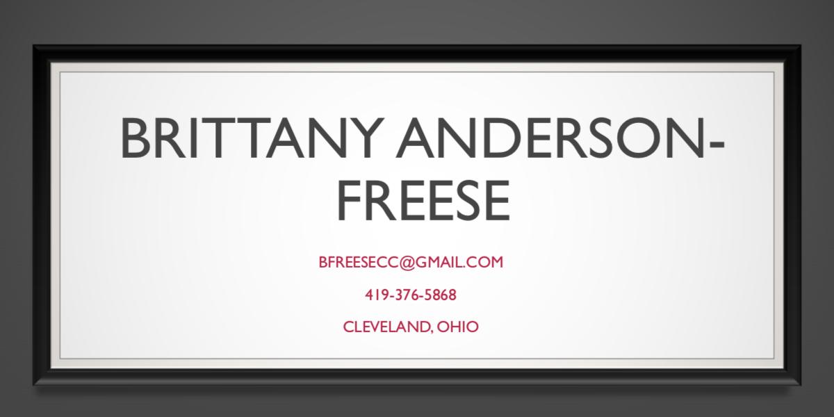 Brittany Anderson-Freese's Portfolio Project