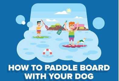 Ultimate SUP Pup Safety List