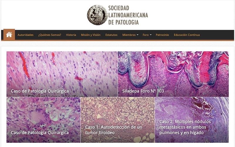 slap-patologia.org