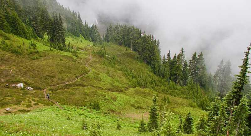 Kermt ahead on the trail