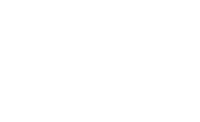 The Big Immunity Company Logo