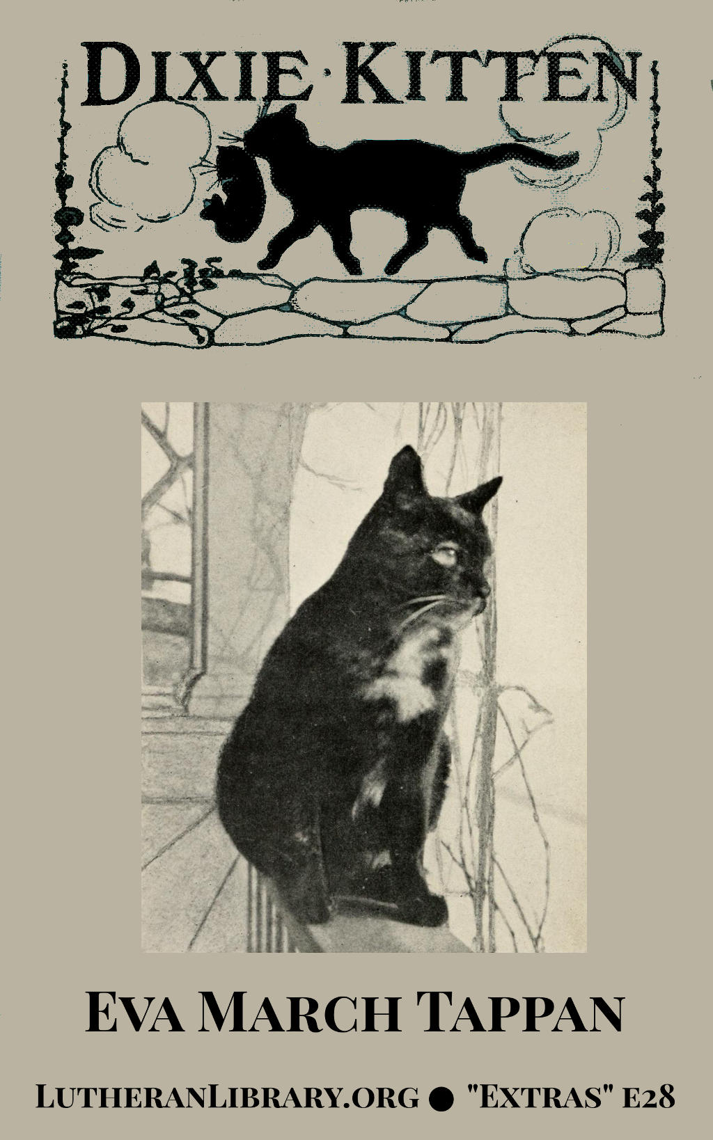 Dixie Kitten