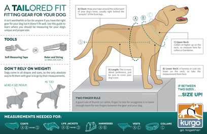 How to Ensure the Perfect Fit For Dog Coats & Harnesses