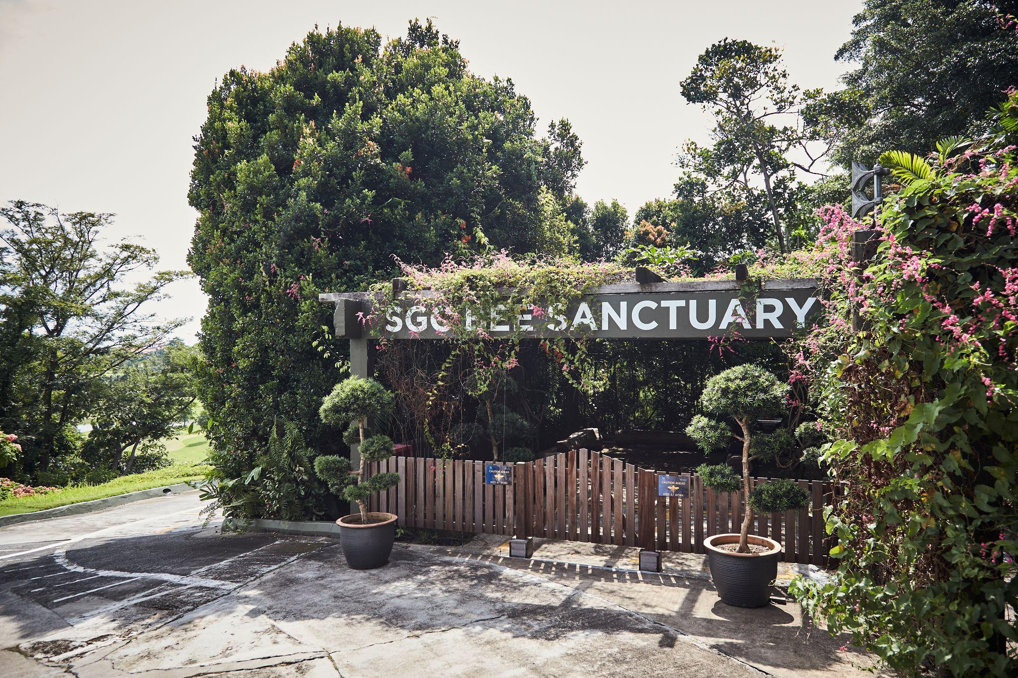 Image of Bee Sanctuary