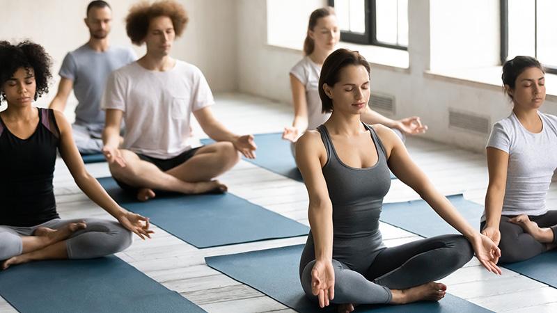 Multiple people practicing yoga