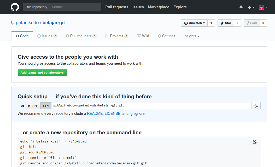 Repository Kosong di Github