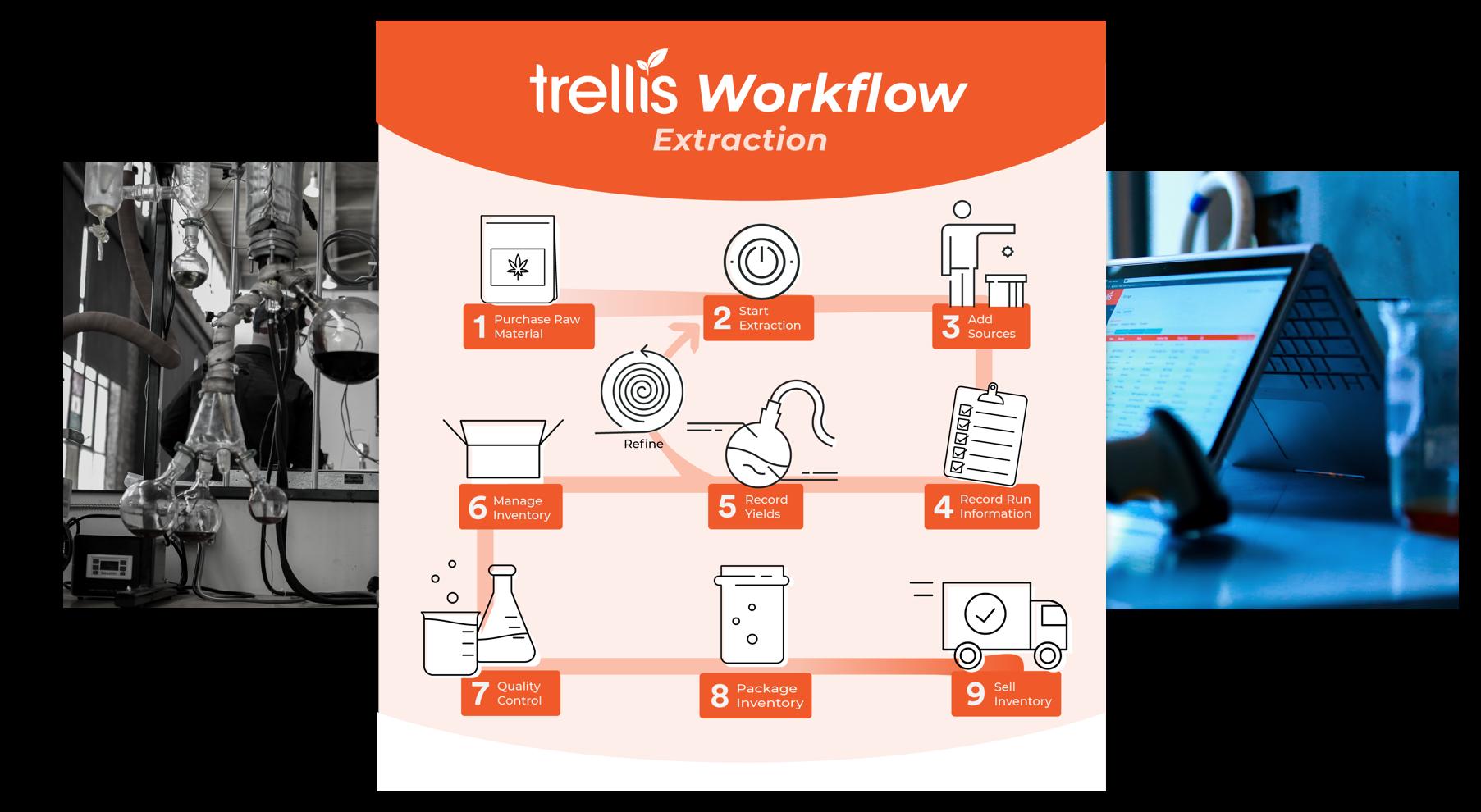trellis_workflow