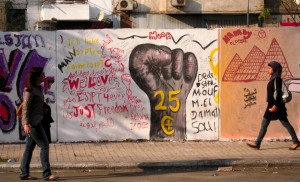 Translating the Egyptian Revolution