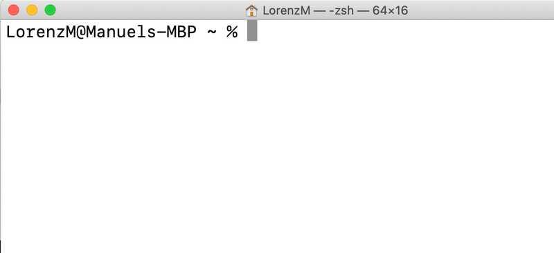 The macOS terminal
