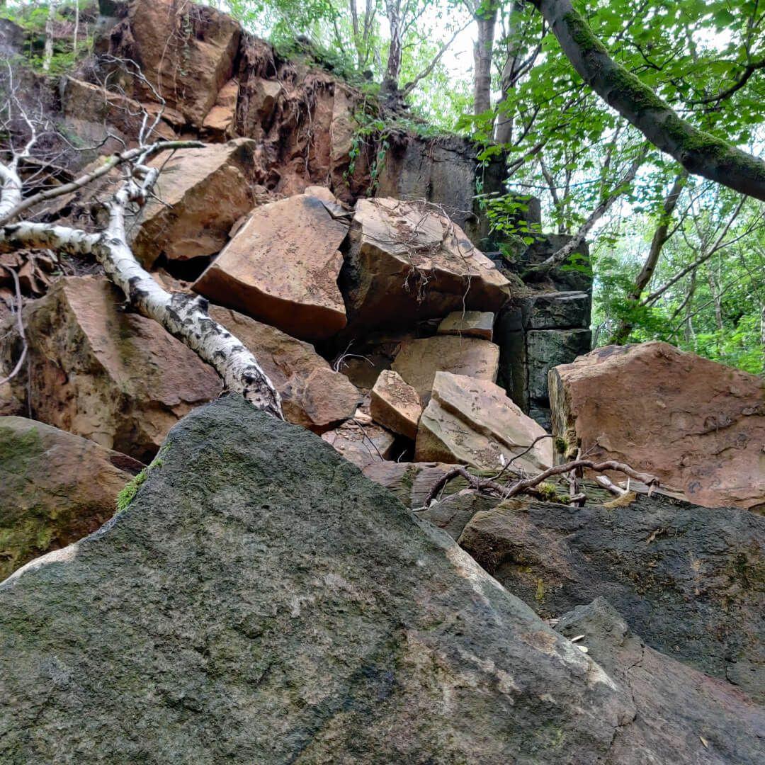 Calverley Wood Quarry