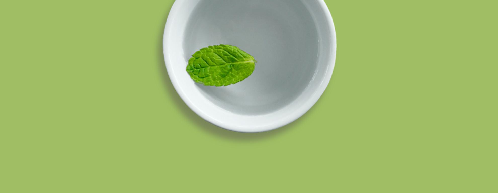 Hierbabuena: para qué sirve, beneficios y cómo se usa - Featured image