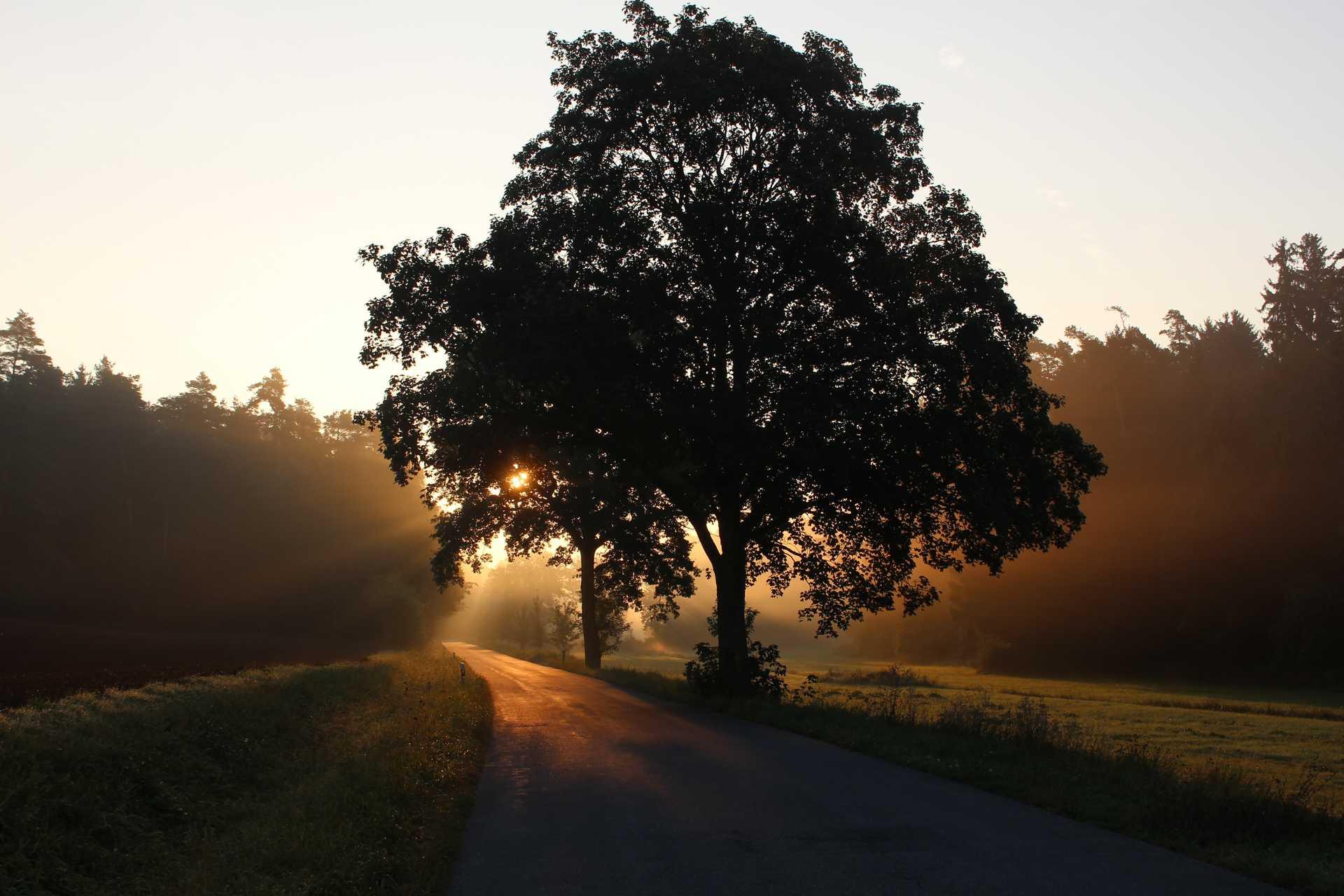 Rural Bavarian countryside sunset