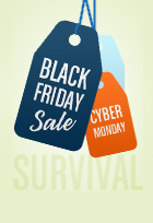 black friday & cyber monday survival guide end
