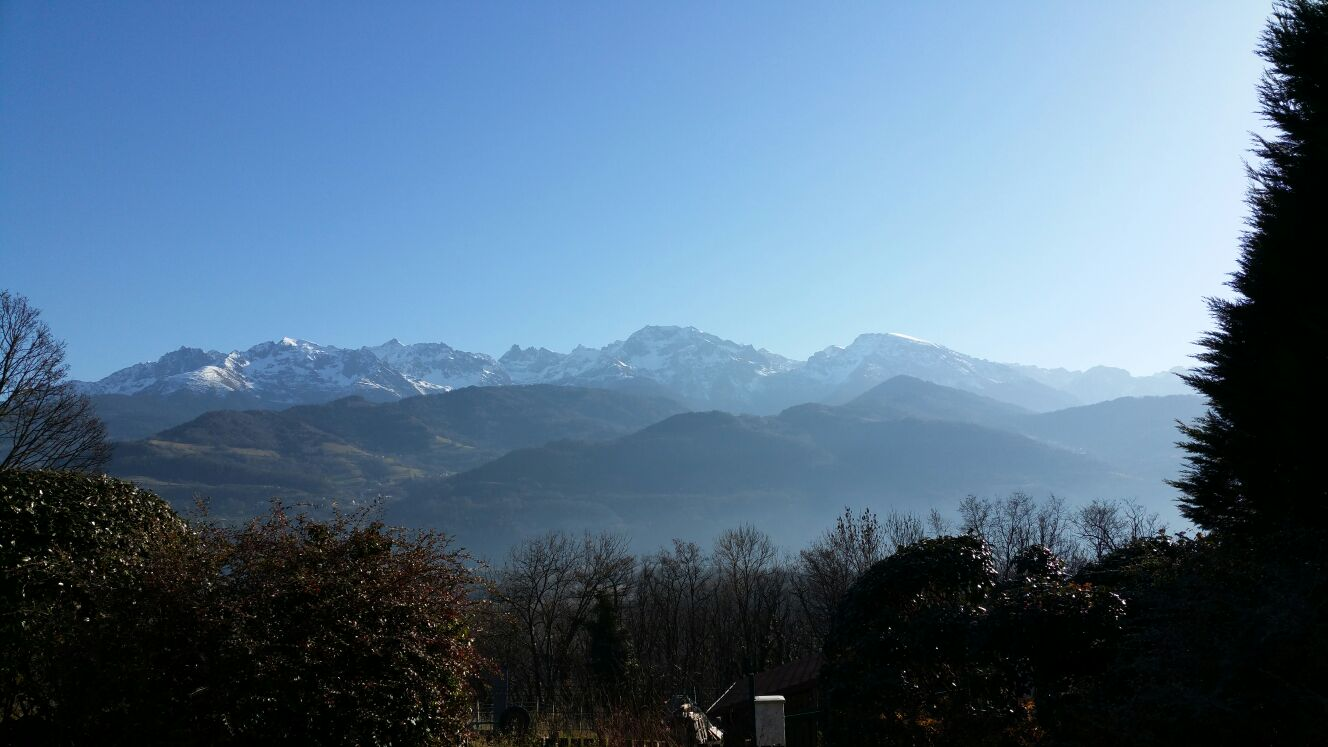 Picture of the Alps