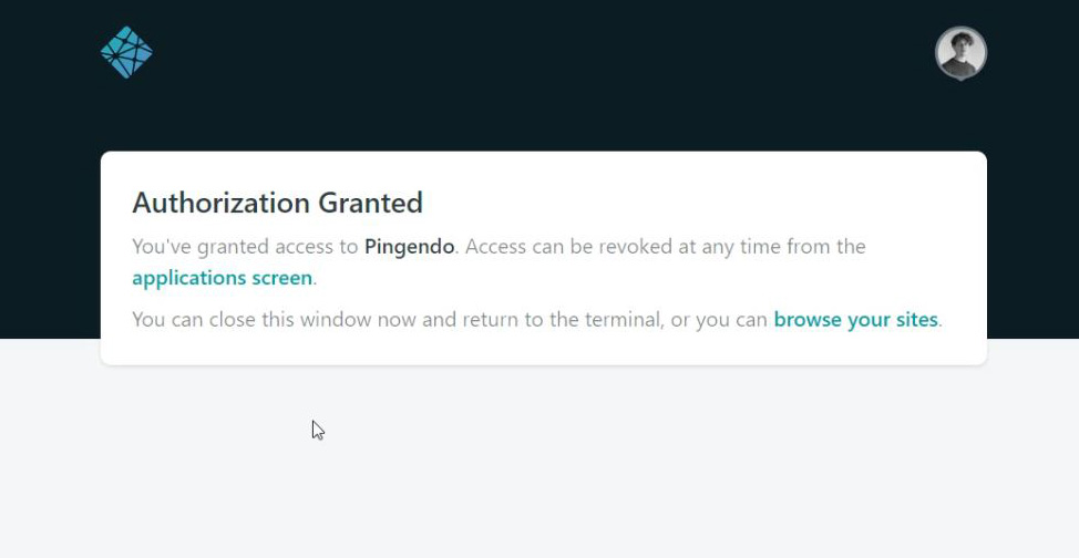 Pingendo working space and UI