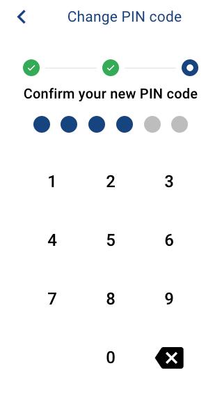 update-pincode-3