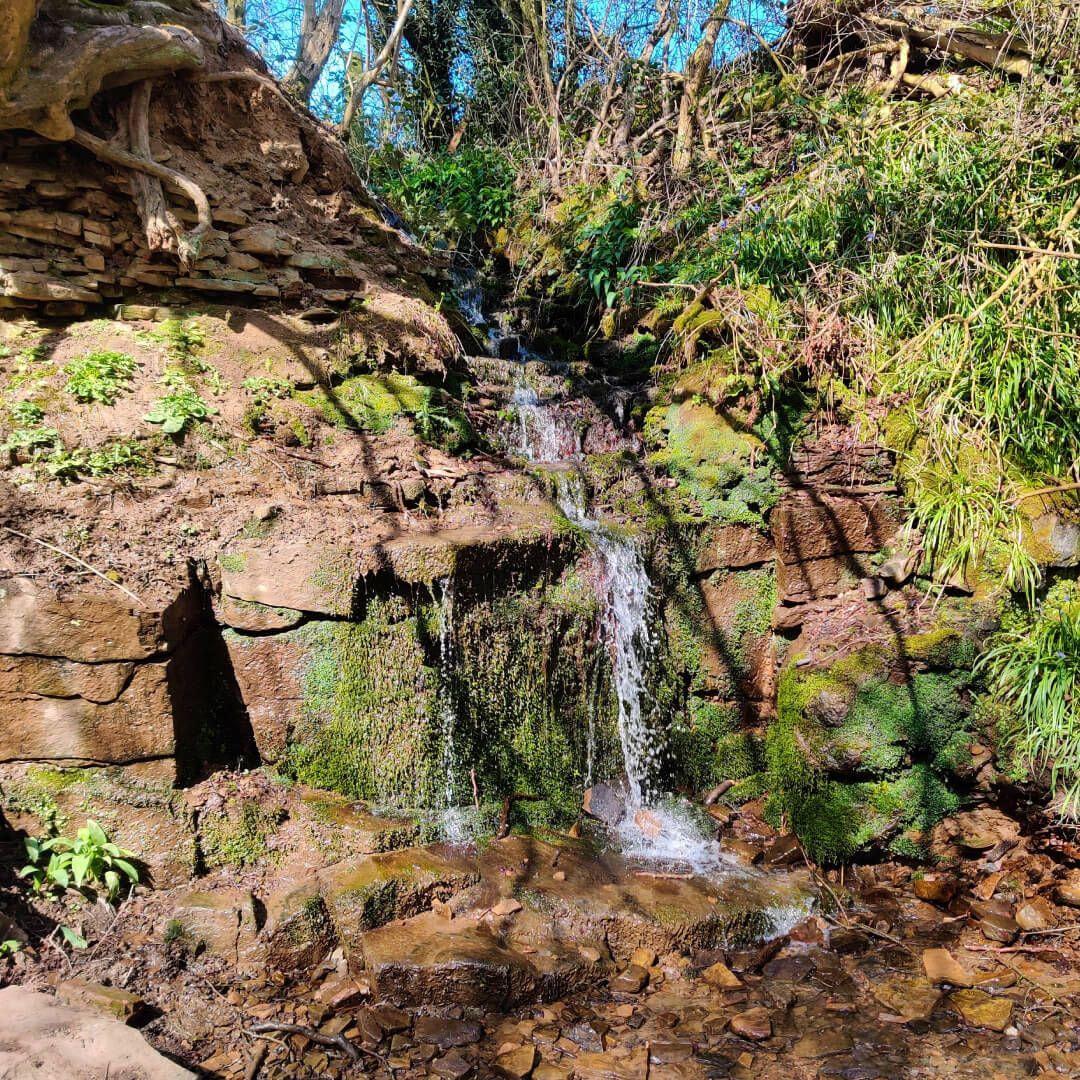 Waterfall in Nan Whins Wood (Sykes Wood)