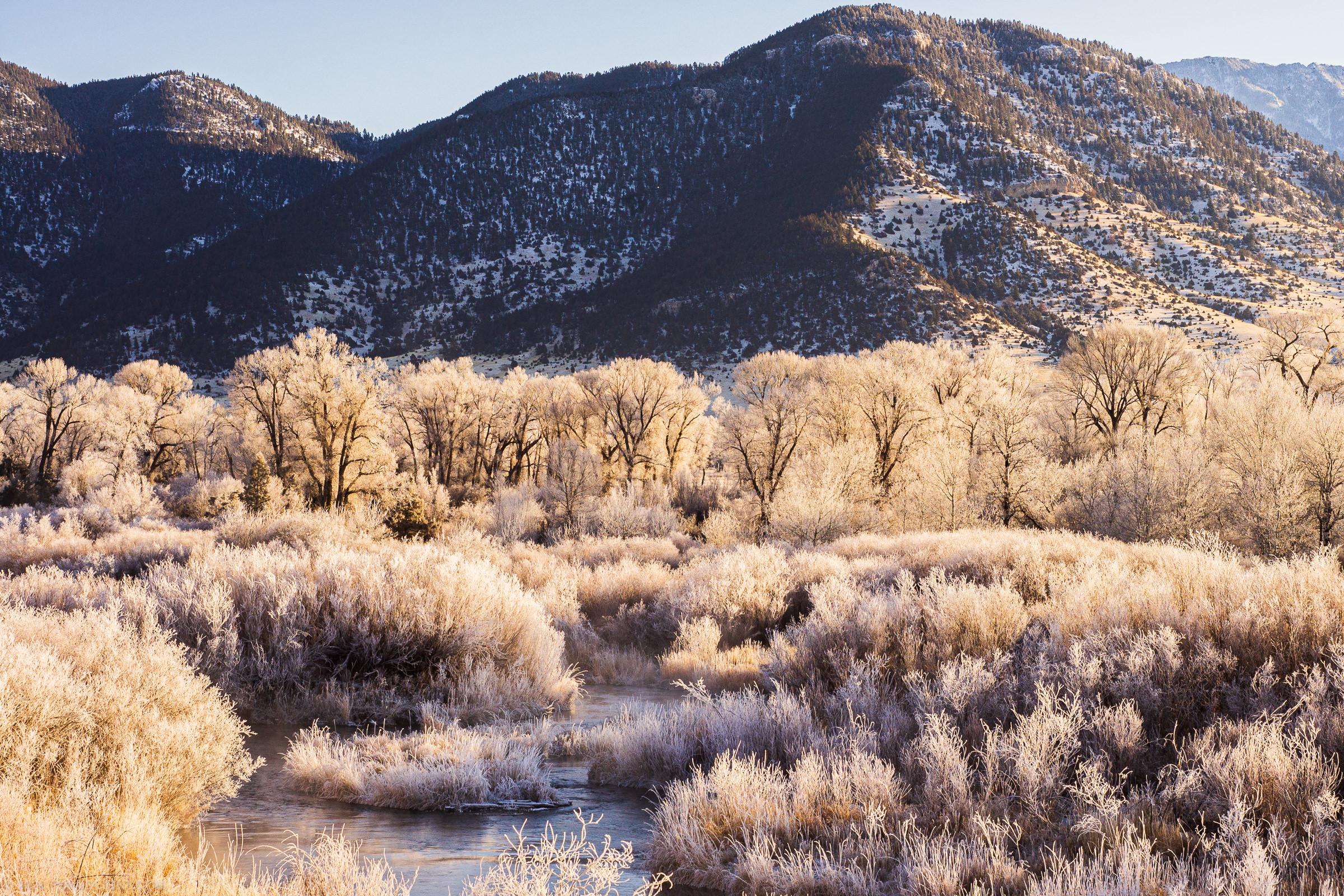 Frozen Yellowstone River Morning