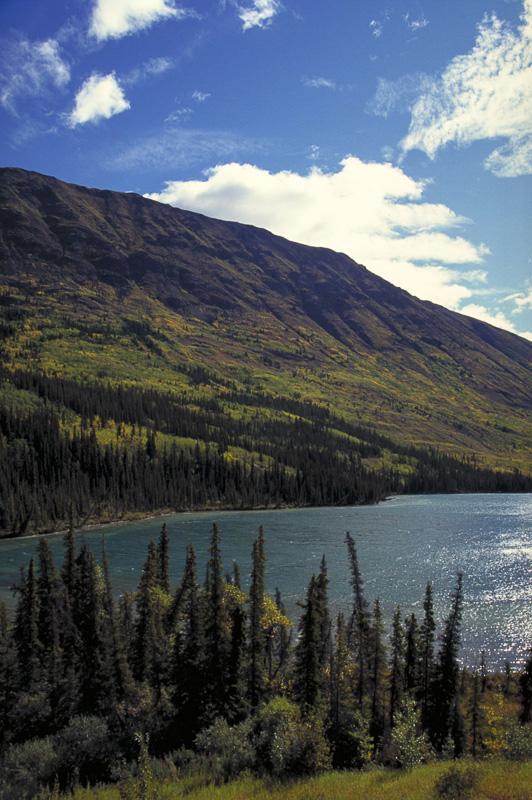 Tagish Lake, Carcross, Yukon, Canada, 1998