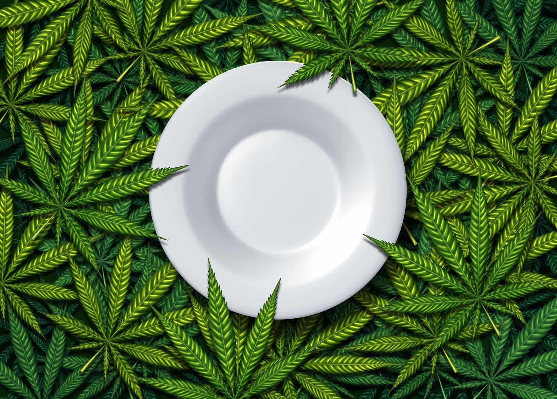 Edibles Weed: Beginner's Guide On How To Get High