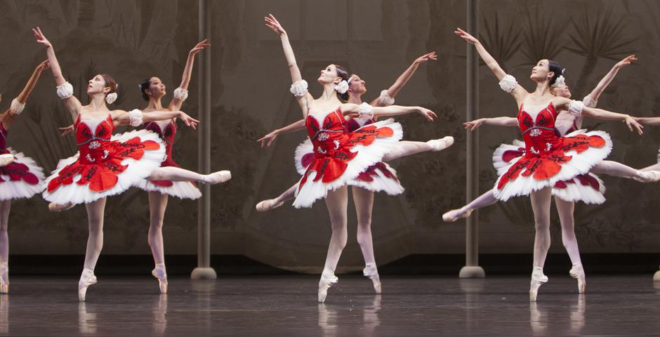 Paquita for Dutch National Ballet
