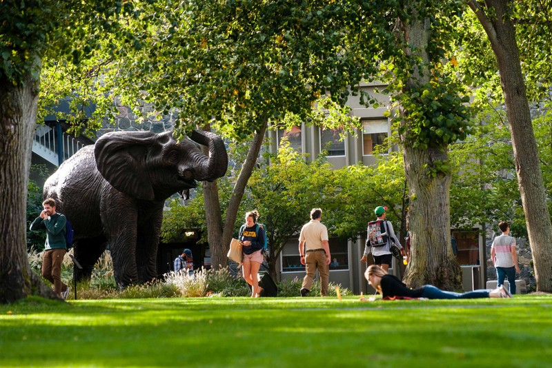 Tufts University students walking passed the elephant mascot statue on the quad