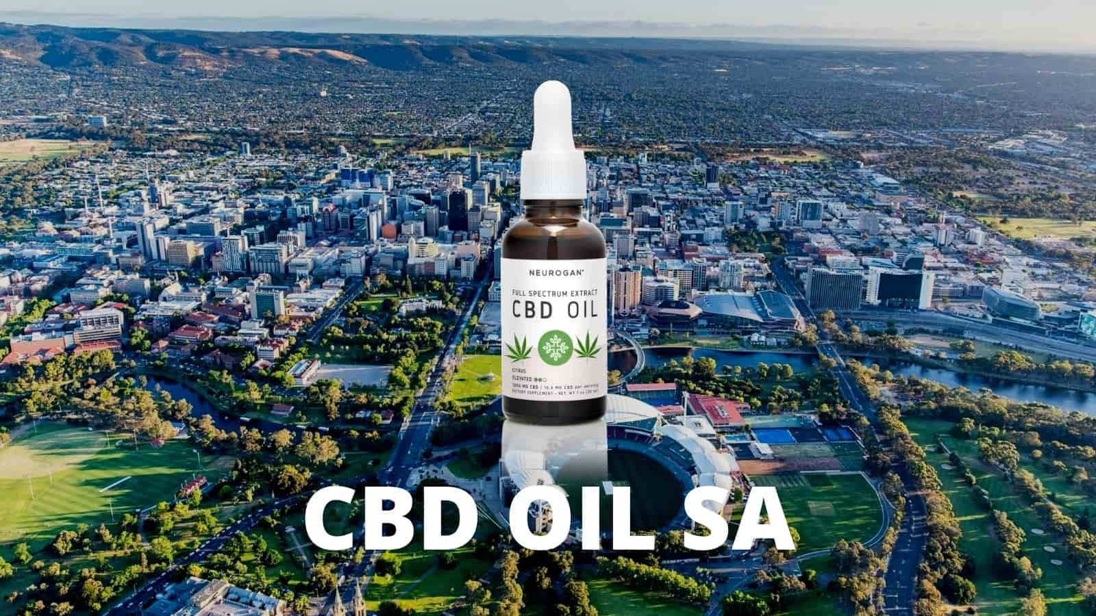 Is CBD Oil Legal in SA?
