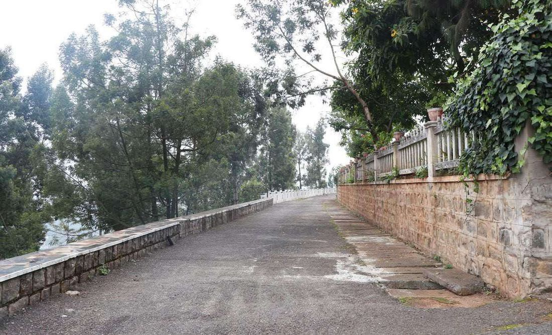 Another view of a neighbourhood road commonly used for walking