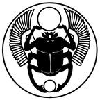 Beetle image by Margarethe Heisser