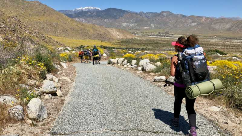 Walking on paved trail