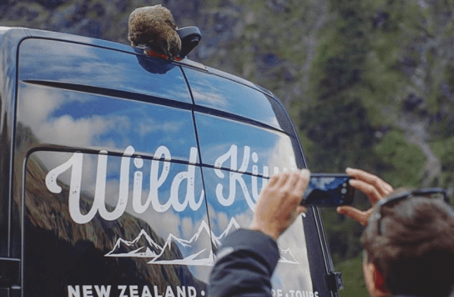 6 Reasons Why A New Zealand Adventure Should Top Of Your #TravelGoals Wish List