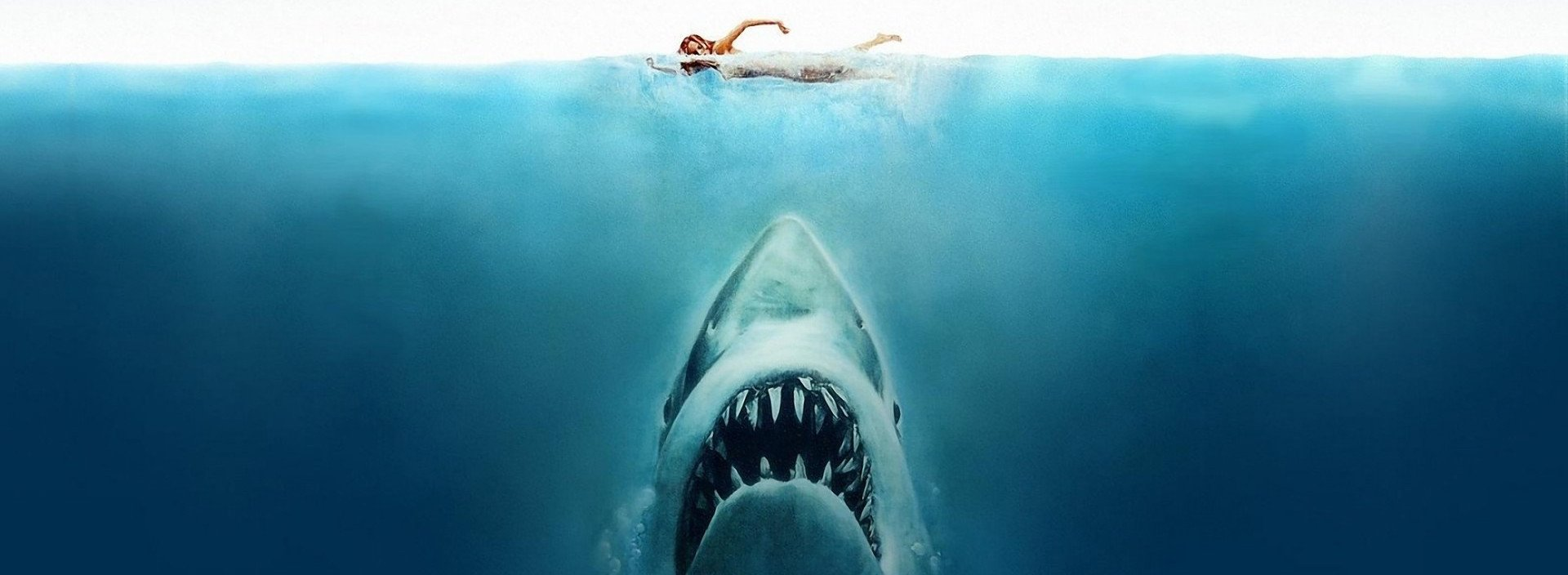 Jaws/