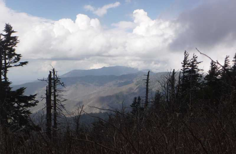View of Mt. LeConte