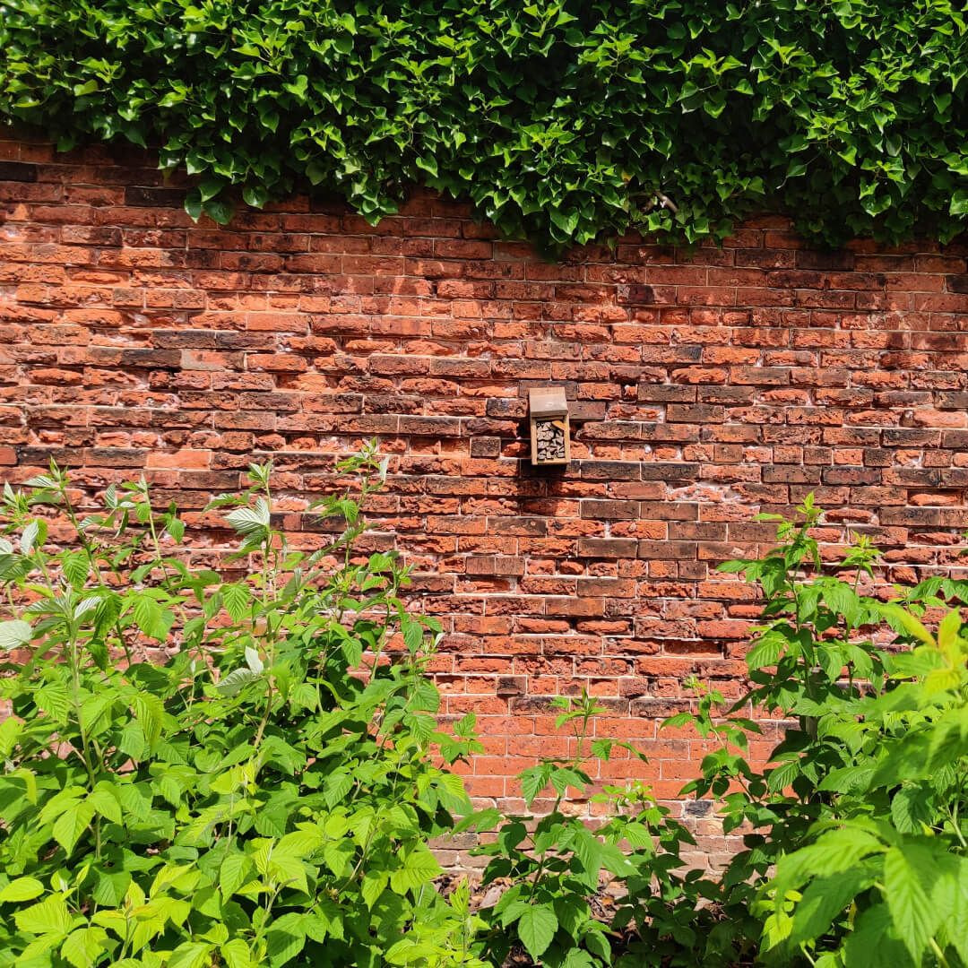 Gotts Park Bee Hotel on red brick wall in Rose Garden
