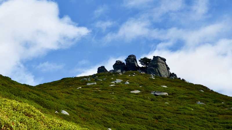 Manzanita, rocks, and clouds