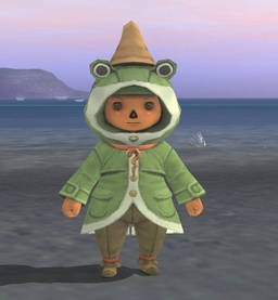 Poroggo Coat