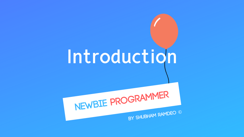 Introduction to Newbie Programmer Series