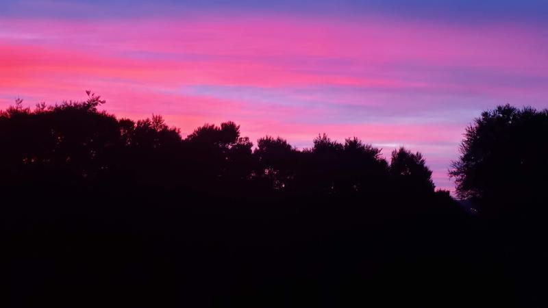 Our last Dunedin sunrise