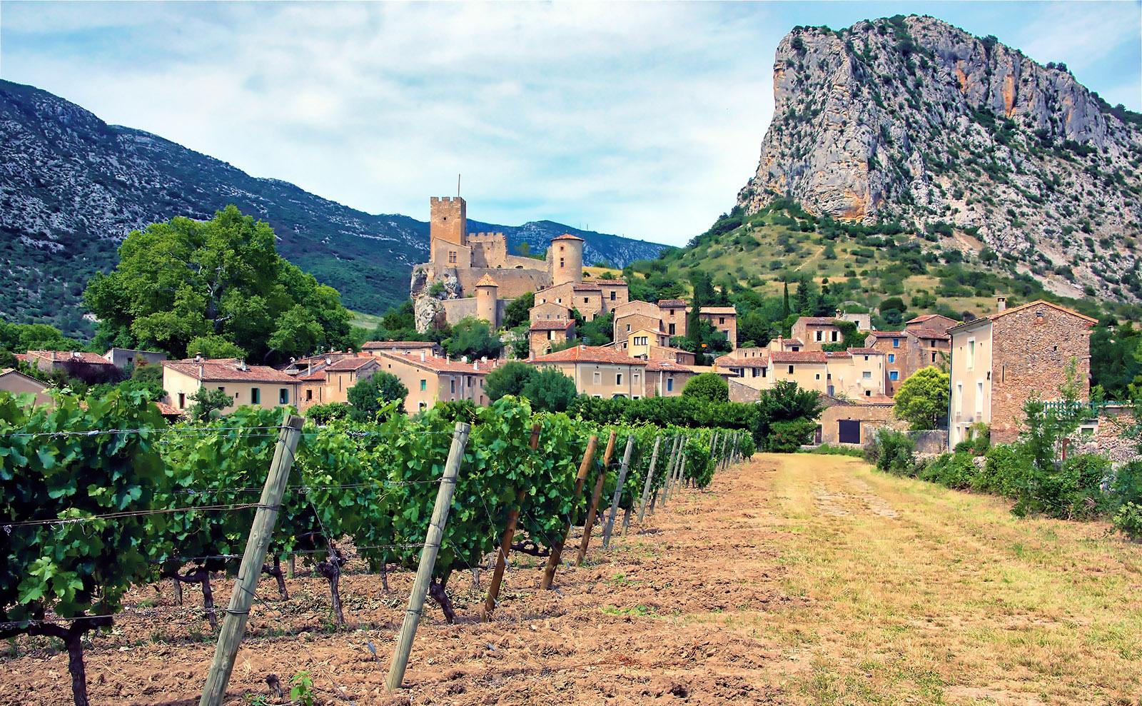 vineyards in the village of Saint Jean de Bueges in Languedoc, France