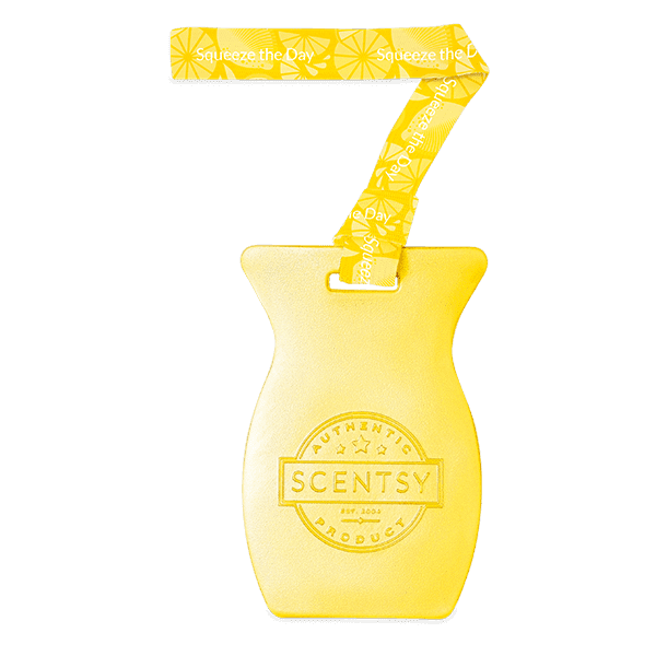 Squeeze the Day Scentsy Car Bar