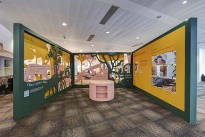 A photo of the Animal Friends exhibition, with bright yellow and deep green walls decorated with animal and tree silhouettes. Captions adorn the walls, and interactive flip cards are on the right.
